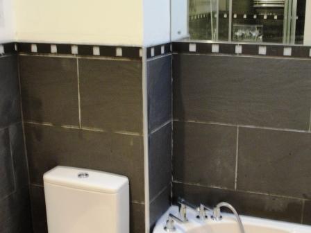 Ceramic Bathroom Tiles After