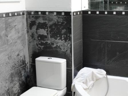 Ceramic Bathroom Tiles Before