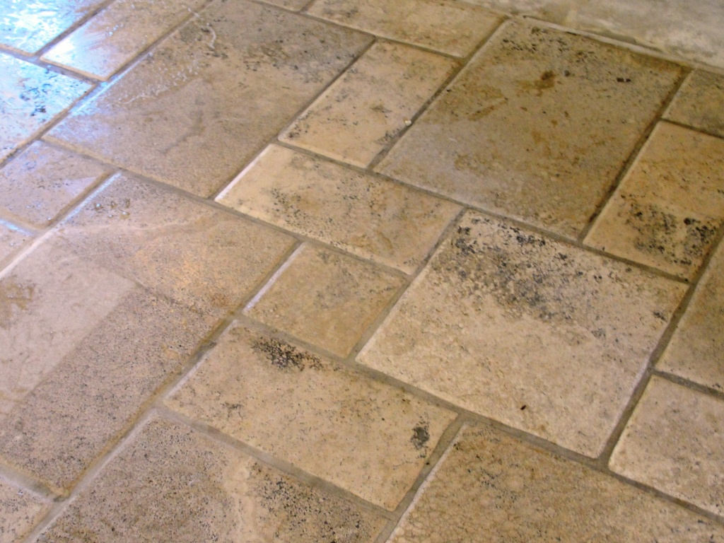 How To Polish Travertine Floors Floor Matttroy